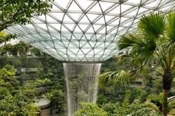 مرتفعترین آبشار مصنوعی در فرودگاه جدید سنگاپور رونمایی شد