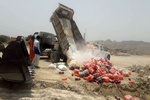 ۹۲ تن مواد غذایی فاسد در آذربایجانشرقی معدوم شد