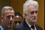 رهبر سابق صربهای بوسنی به حبس ابد محکوم شد