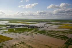 خسارت۱۶۴۰ میلیارد تومانی سیل به کشاورزی گلستان ومازندران