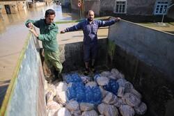 توزیع روزانه ۱۰۰۰۰ پرس غذای گرم در مناطق سیل زده/تشکیل ستاد امداد