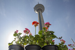 هوای تهران «قابل قبول» است/ پیش بینی هوای ۳۱ درجه ای برای فردا