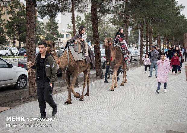 مسافران نوروزی سمنان