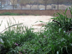 بازبینی طرح احیا و ساماندهی رودخانه درکه