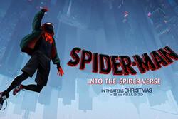 وقتی «مرد عنکبوتی» تکثیر میشود/ انیمیشن با چاشنی سیاست