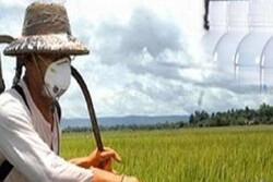 کشاورزان از ترکیب شیمیایی آمیتراز ۲۰ درصد استفاده نکنند