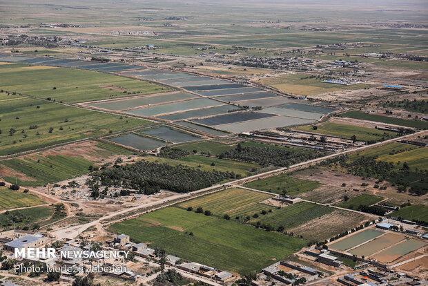 انجمن داروسازان ایران, سیلاب, حمید خیری