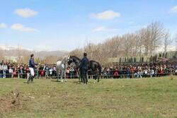 جشنواره نوروزگاهی سوارکاری و اسب نهاوند برگزار شد