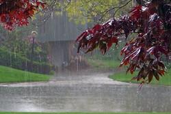 هشدار در خصوص بارش های ۱۱ و ۱۲ فروردین در استان تهران