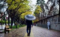 بارش باران در اکثر مناطق کرمان/ احتمال طغیان رودخانهها وجود دارد