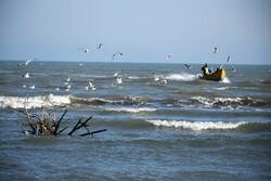 سواحل آستارا میزبان گردشگران نوروزی