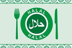 کنفرانس بینالمللی غذای حلال و بیوشیمی برگزار می شود