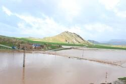 آزادسازی بیش از ۲۵۰ هکتار از تصرفات رودخانهای در لرستان