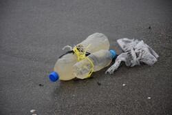 زباله های بر جای مانده از مسافران نوروزی در سواحل آستارا