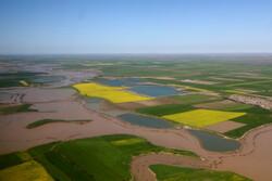 افزایش دبی گرگانرود/ تخلیه آب از شهرها در یک هفته آینده