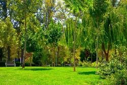 افتتاح بوستان تمدن در کرمان