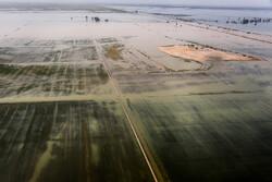 سیلاب وارد مزارع کشاورزی ۳ روستای شادگان شد