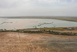 ۱۷۴ هزار هکتار از زمینهای خوزستان زیر آب است