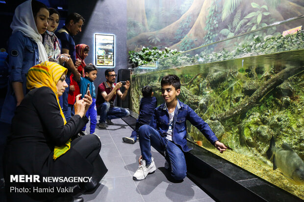 Isfahan Aquarium Tunnel