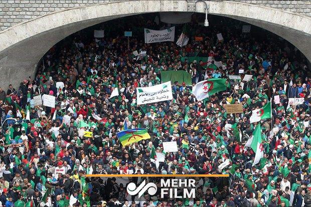 الجزائر میں سعودی عرب اور امارات کے خلاف مظاہرین کی نعرے بازی