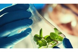 Iran to hold intl. biotechnology summer school