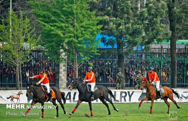 جشنواره اسب در نپال