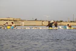 سازمان آب و برق خوزستان به اخطاریه های هواشناسی توجه نکرد