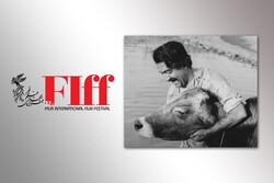 پخش فیلم پشتصحنه و تست بازیگری «گاو» در جشنواره فیلم جهانی