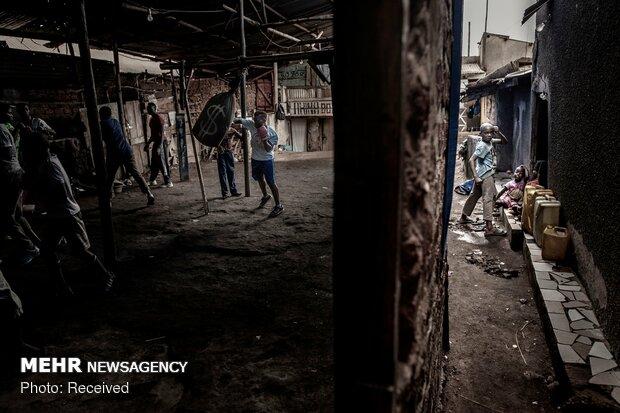 برندگان مسابقه عکاسی ورلد پرس