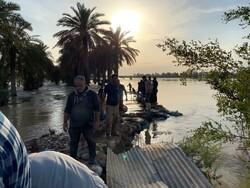 سیلاب بیش از ۱۲۰۰ میلیارد ریال به بخش کشاورزی دزفول خسارت زد