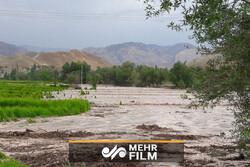صوبہ خراسان رضوی میں سیلاب سے متعدد گاڑیاں تباہ
