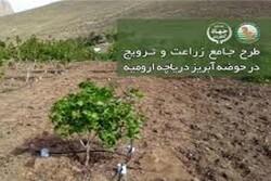 طرح جامع زراعت در حوضه دریاچه ارومیه اجرا می شود