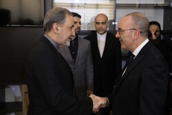 Italy's President of the Foreign Affairs Committee meets Velayati
