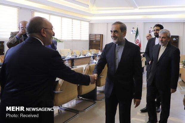 Italian Senate's President of the Foreign Affairs Committee visits Velayati