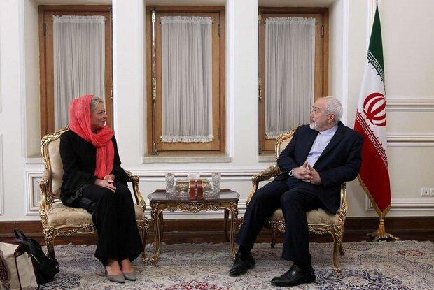 UN special envoy for Iraqi affairs confers with Iran's Zarif