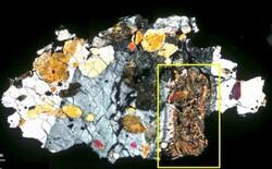 نشانه هایی از حیات میکروبی در مریخ شناسایی شد