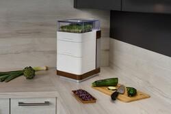 تبدیل آپارتمان به باغ و مزرعه با ابداع جوانههای ارگانیک