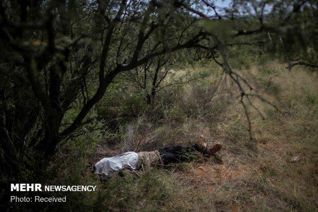 جایزه پولیتزر برای تصاویر بحران مهاجرت