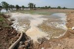 کینیڈا میں بارشوں اور سیلاب نے تباہی مچادی