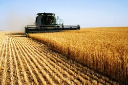 Netherlands stresses expansion of agriculture co-op with Iran