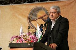 عبور صنعت خودروسازی ایران از مونتاژکاری/ قطعات باقیمانده ۳۰۱ هم داخلیساز میشود