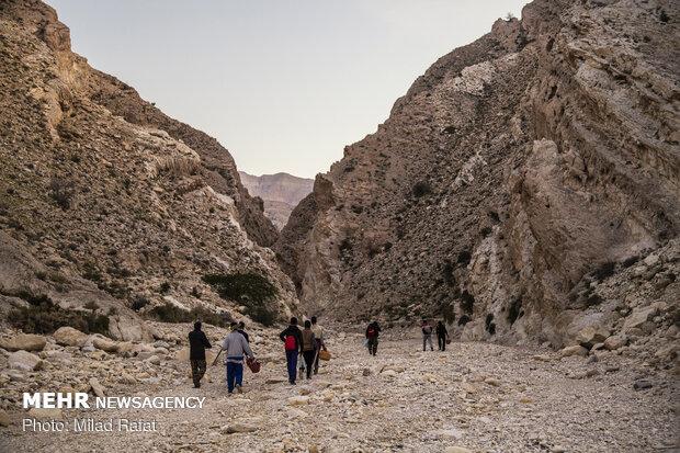 جهاد در پشت کوه