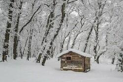 بارش برف بهاری در ۵۰ روستای اشکورات شهرستان رودسر