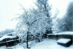 فروردین ماه مرند با برف بدرقه شد