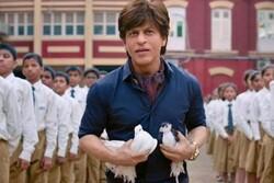 شاهرخ خان متوقف شد/ شکست فیلم «صفر» چه بر سر خان آورد؟