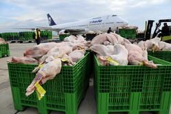 اولین محموله گوشت وارداتی در سال جاری وارد کشور شد