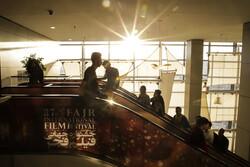 تلخ و شیرین روز شلوغ «فجر جهانی»/ سینما ناجی یک اعدامی میشود؟
