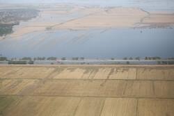 زمینخواری و تخریب در ۲ هزار هکتار از زمینهای میانکاله