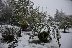 سفیدپوش شدن ارومیه در دومین ماه بهار