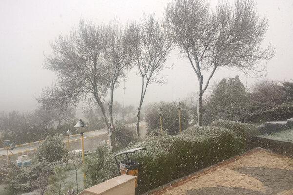 بارش نخستین برف زمستانی در شهر یزد